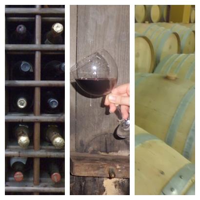 Cannonau wine tour - degustazione vini sardi